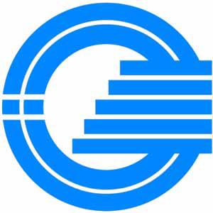 GSM Coin
